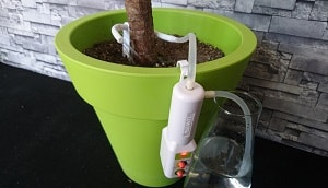 Plant Watering Device White
